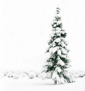 Pasākumi un koncerti Ziemassvētkos 2017 / uzziņas, tirdziņi